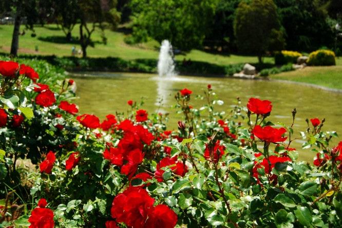 jardines mas bonitos de barcelona