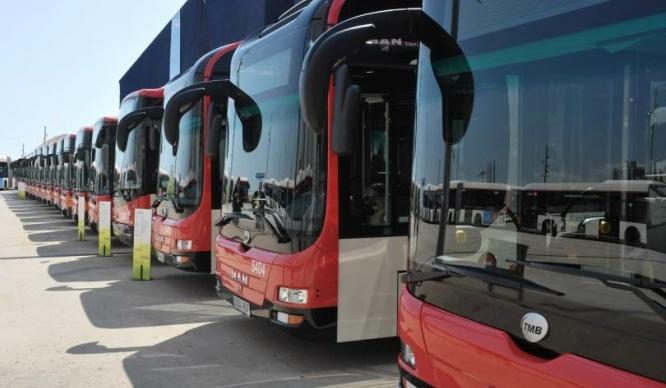 autobusesbarna2