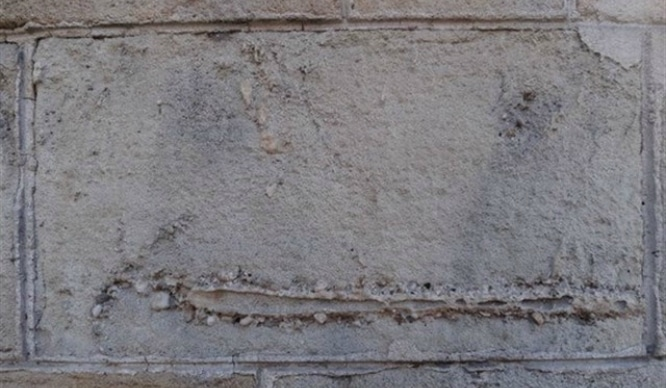fósiles de millones de años en edificios de Barcelona