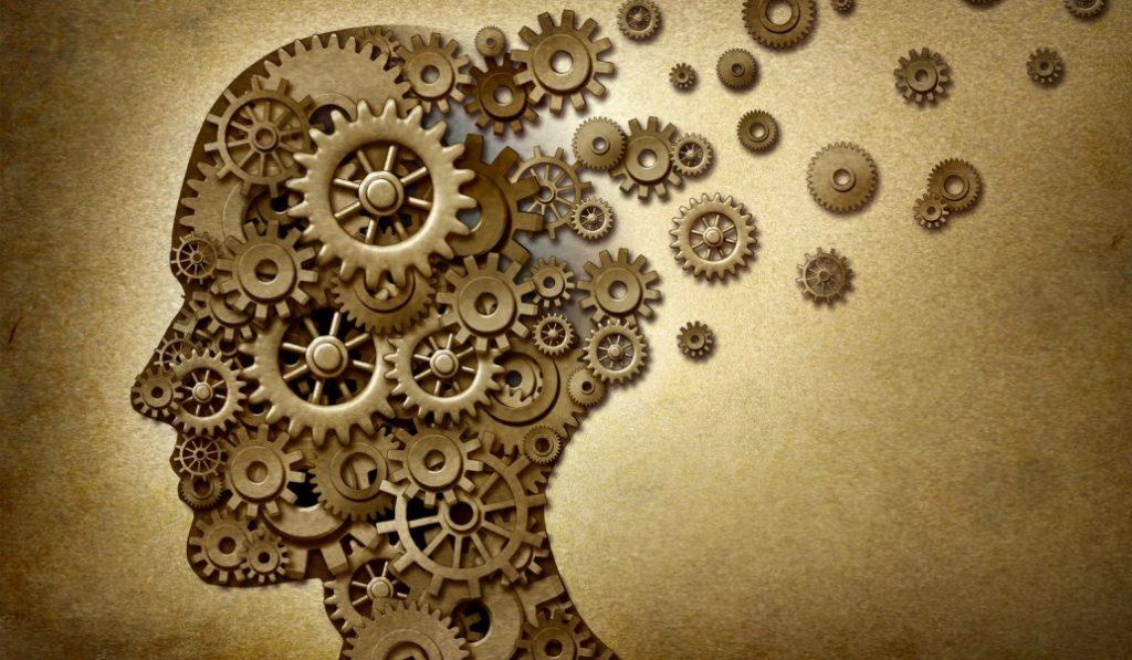 Todo lo que siempre quisiste saber sobre tu cerebro y nunca te aprendiste a preguntar