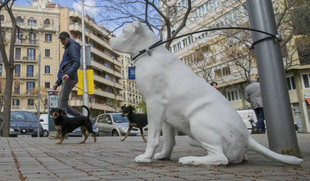 Así es la estrategia de Barcelona para fomentar la adopción de perros