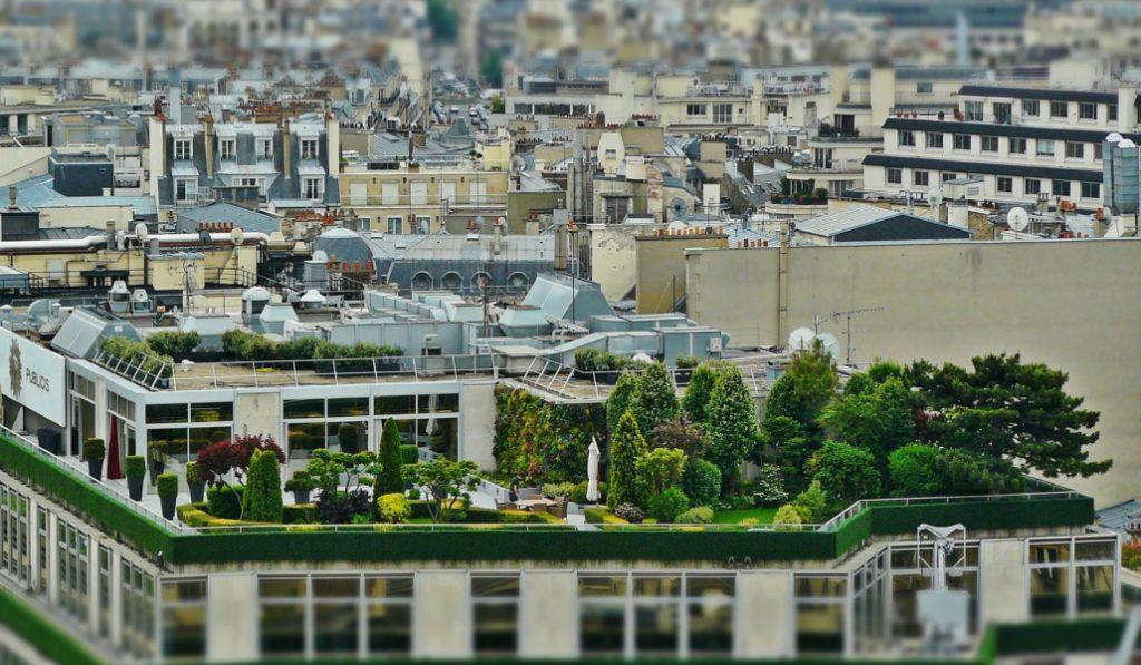 Diez nuevos jardines en las azoteas de Barcelona