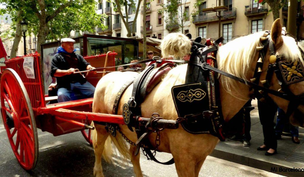 No habrá más carruajes tirados por caballos en Barcelona