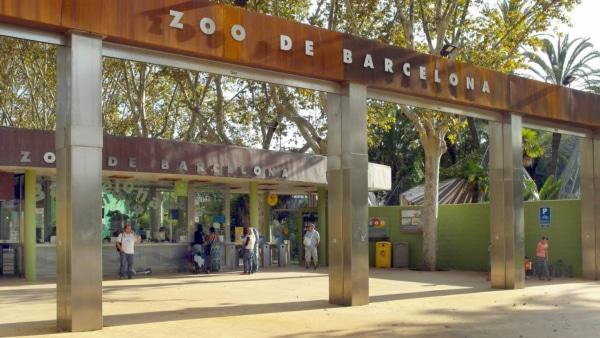 zoo-de-barcelona