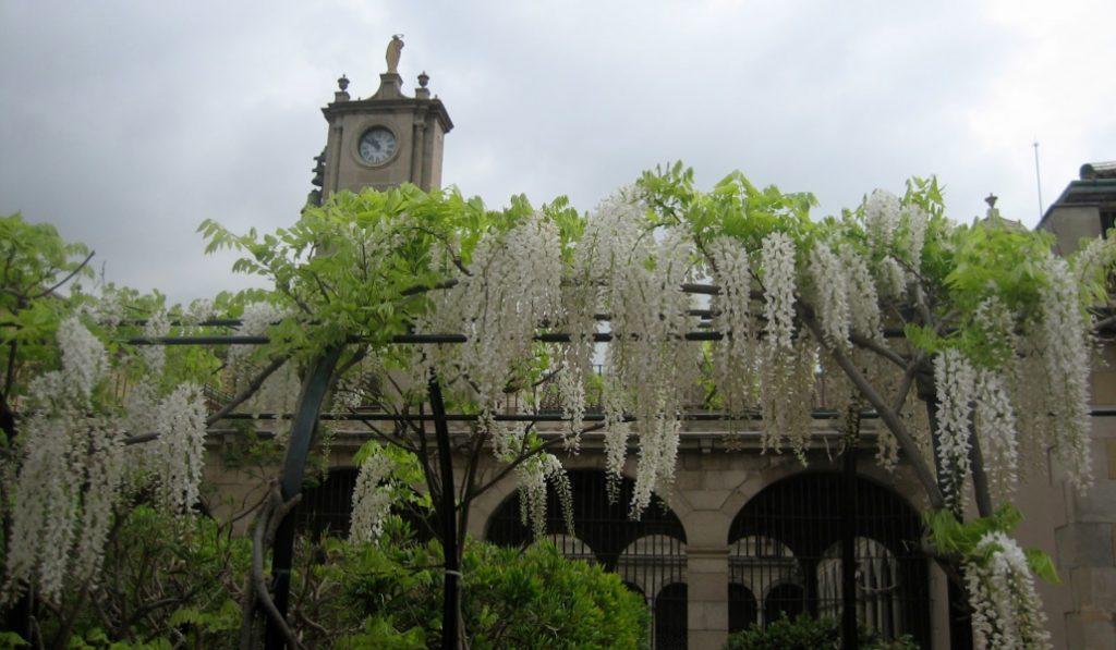 Los Jardines de Mercè Rodoreda, un oasis literario y oculto en la ciudad