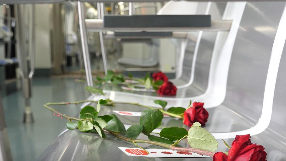 Los autobuses y el metro de Barcelona amanecen llenos de rosas
