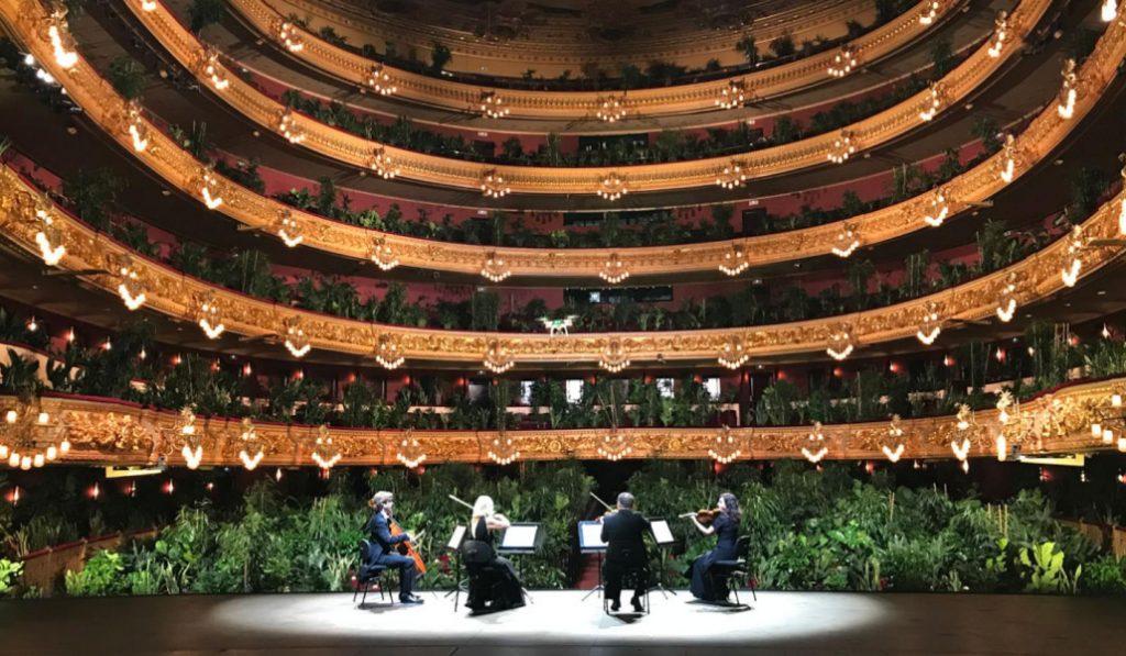 El Liceu reabre sus puertas con un insólito concierto para 2.300 plantas