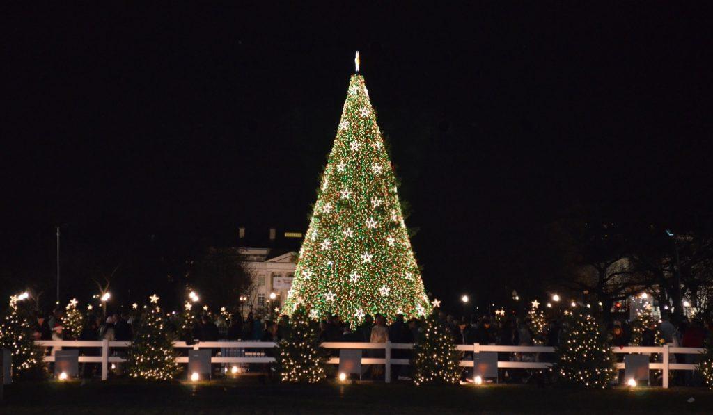 Vuelve la feria navideña de Port Vell con el árbol de Navidad más grande de Catalunya