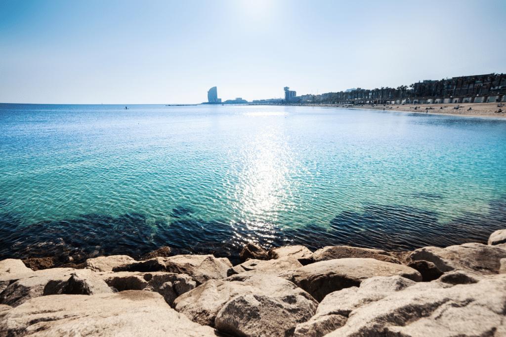 Dos proyectos en Barcelona para salvar los océanos
