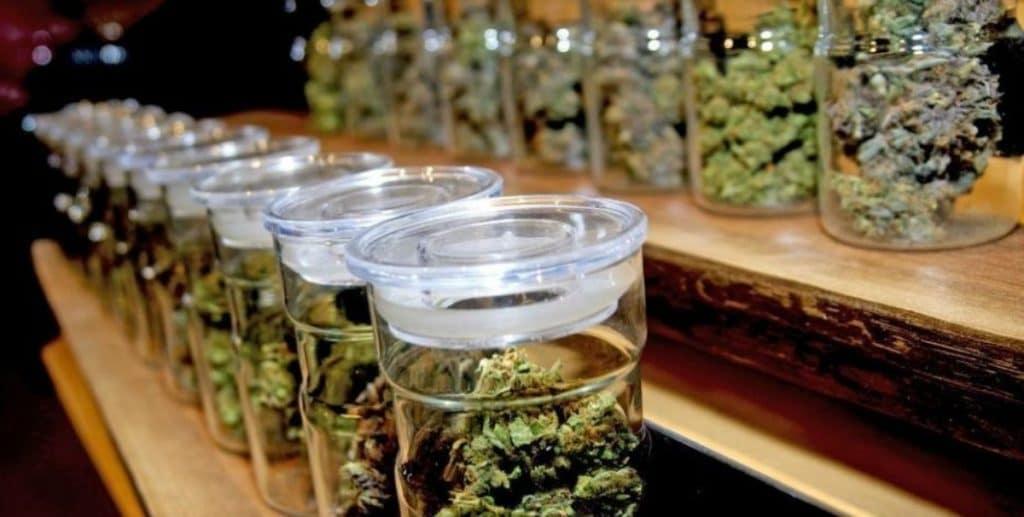 El Ayuntamiento da el primer paso para cerrar los clubs de cannabis