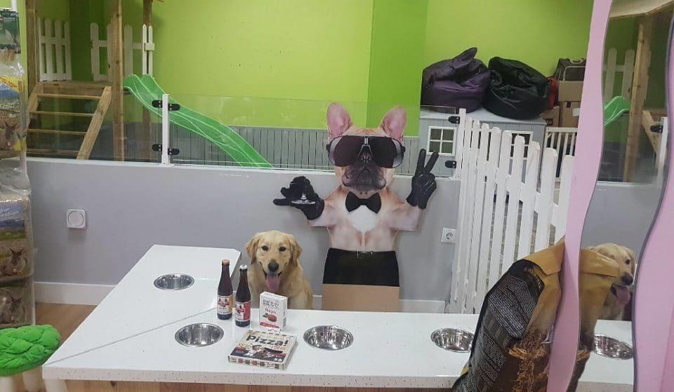 Belfos y Trufas: el bar para perros de Somera