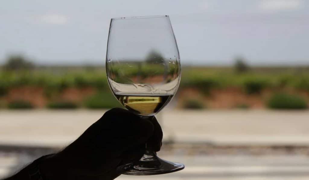 Bodegas Naranjo: cata 3 de sus mejores vinos desde casa con Winers