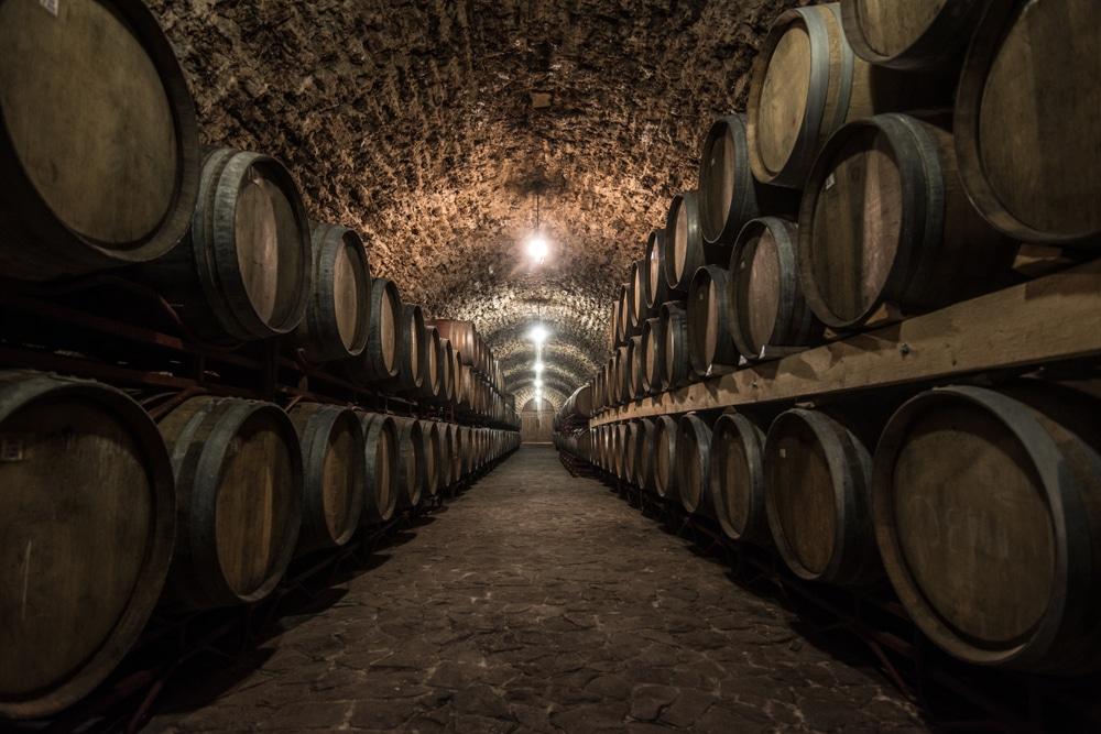 El mundo del vino se abre ante ti con estos tres cursos online