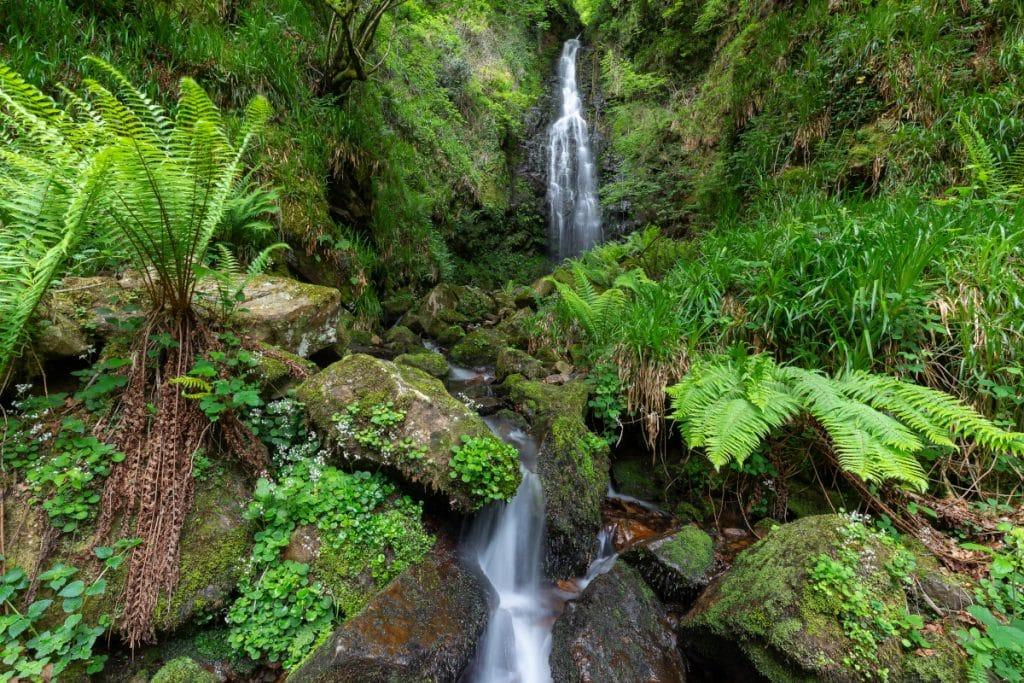 Cascada de Belaustegi: un espacio mágico en pleno Gorbeia