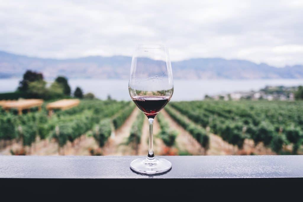 Le premier bar à vin végan de France a ouvert ses portes à Bordeaux !