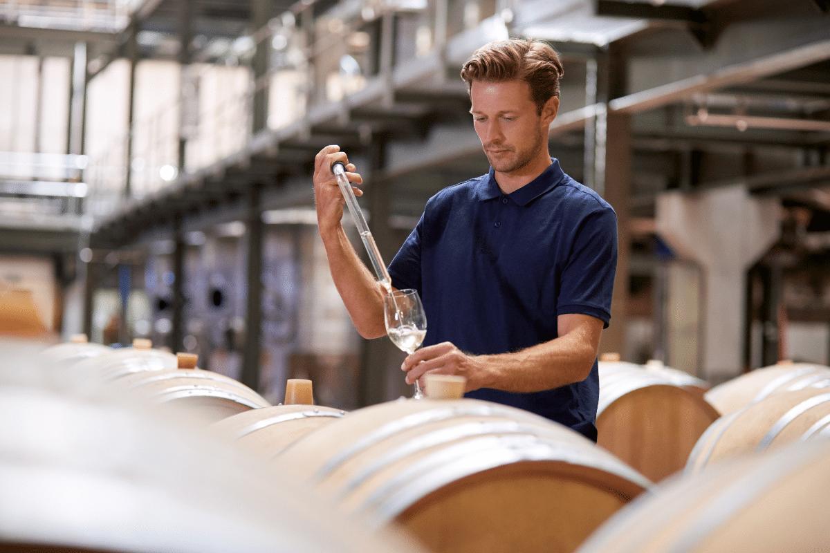 Processus fabrication vin activités