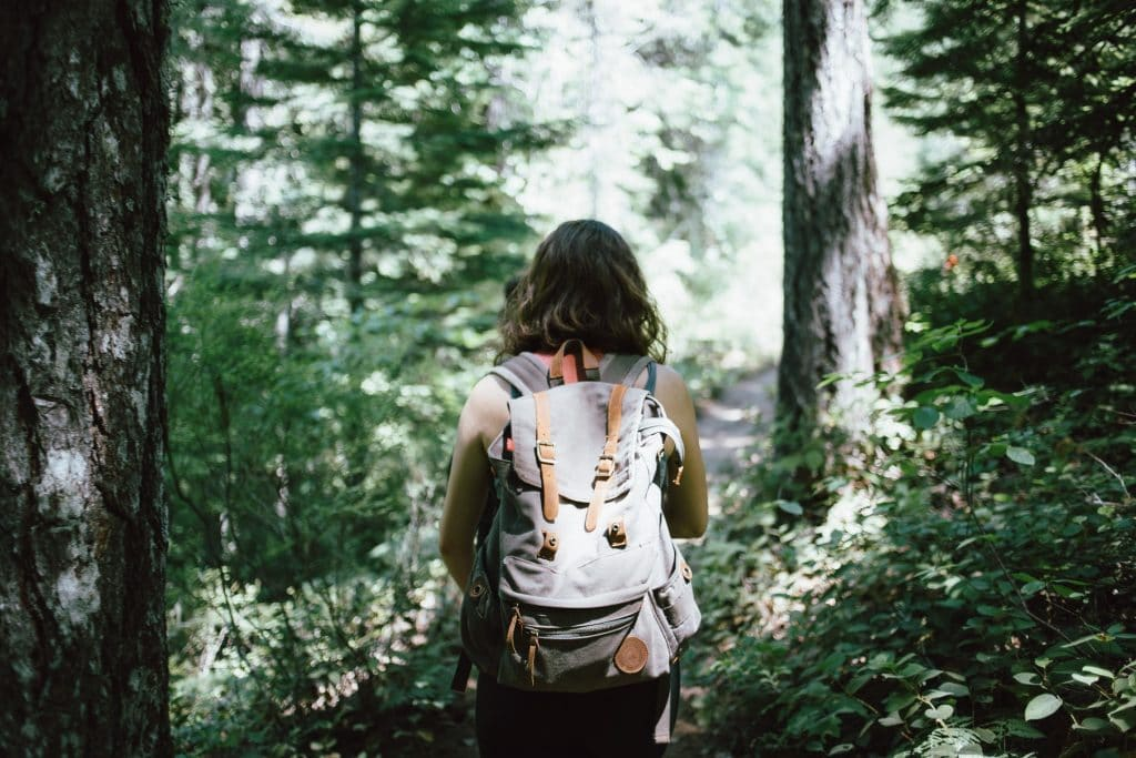 Trails To Hike Around Boston