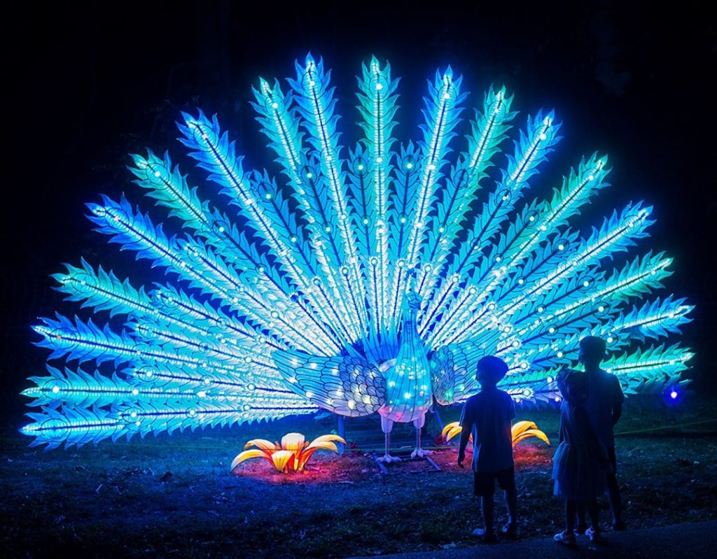 Immerse Yourself In A Merry & Bright World At Stone Zoo's Wondrous Winter Light Show