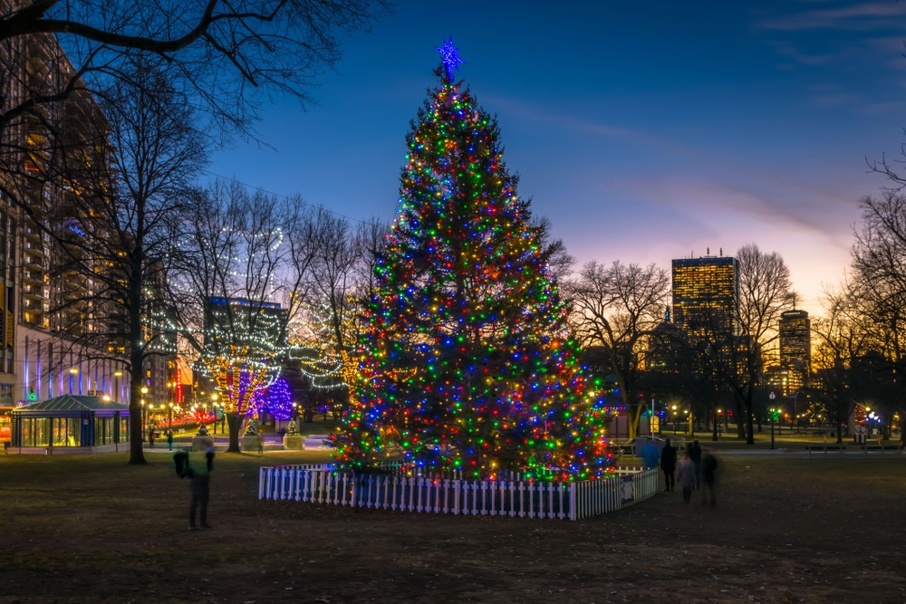 The Boston Common Tree Lighting Ceremony Is Taking Place Today!