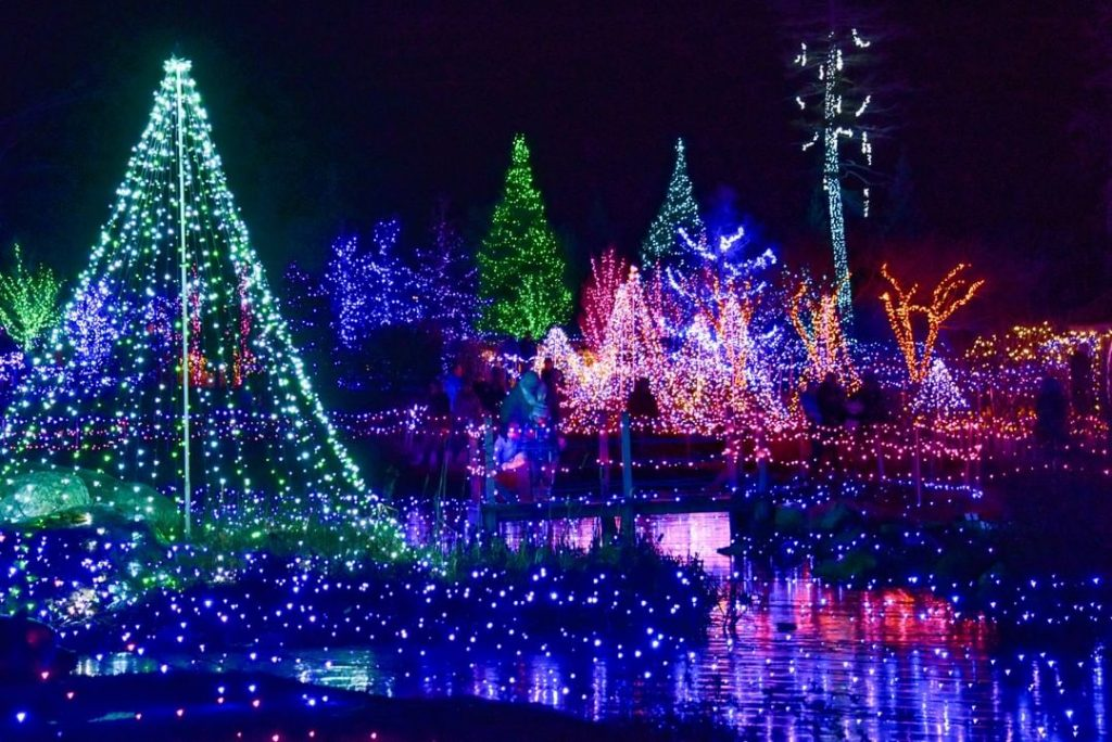 14 Boston Spots In Which To See This Year's Dazzling Holiday Lights