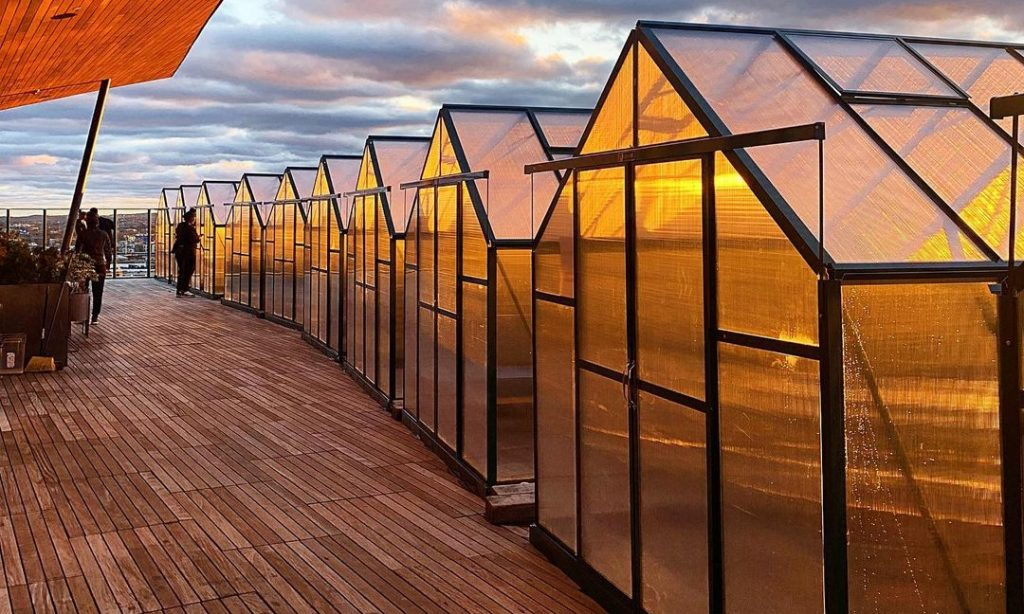 These Rooftop Greenhouses Offer A Breathtaking View Of The Boston Skyline