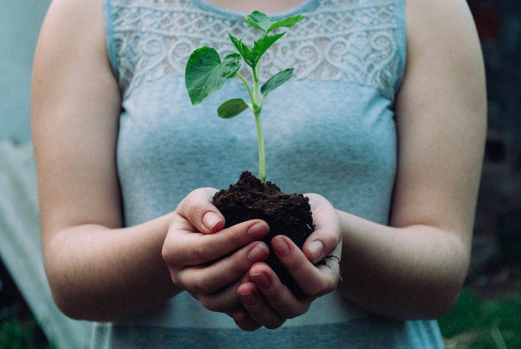 6 Wonderful Ways To Celebrate Earth Day In Boston