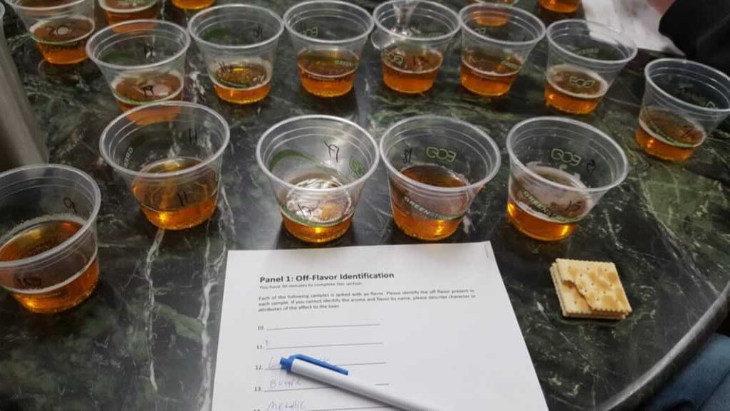 These Awesome Classes Will Teach You Everything You Ever Wanted To Know About Beer!