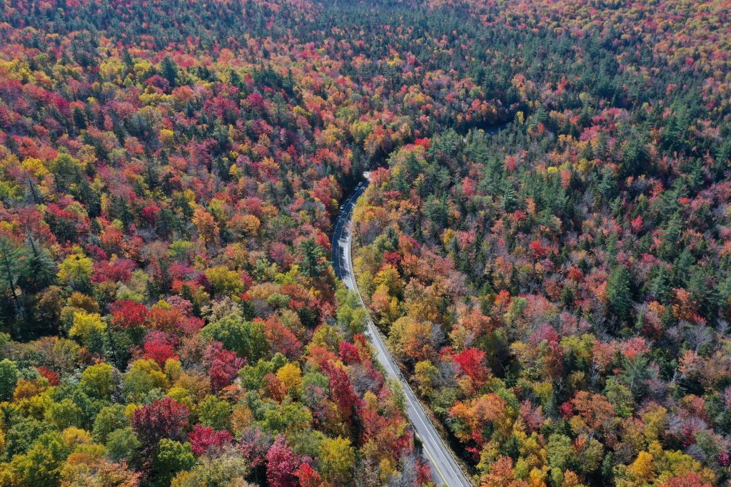 This Massachusetts Town Is One Of The Best Fall Foliage Spots In America
