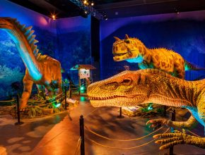 Tickets To Boston's Fascinating Dino Safari Experience Are Now On Sale!