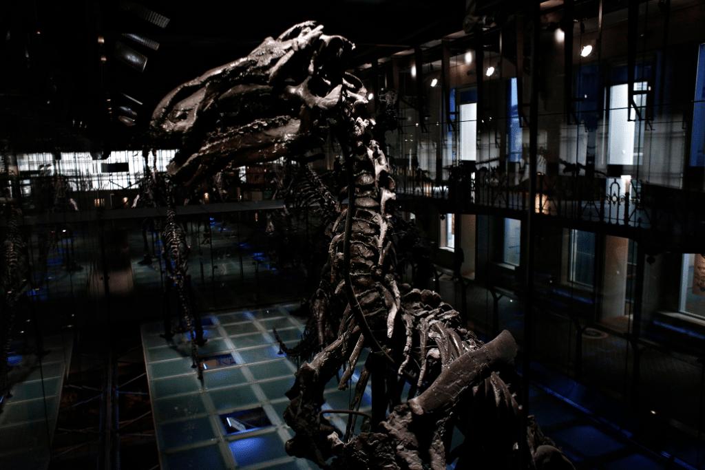 Les Nocturnes des musées bruxellois reprendront chaque jeudi du 22 avril au 10 juin !