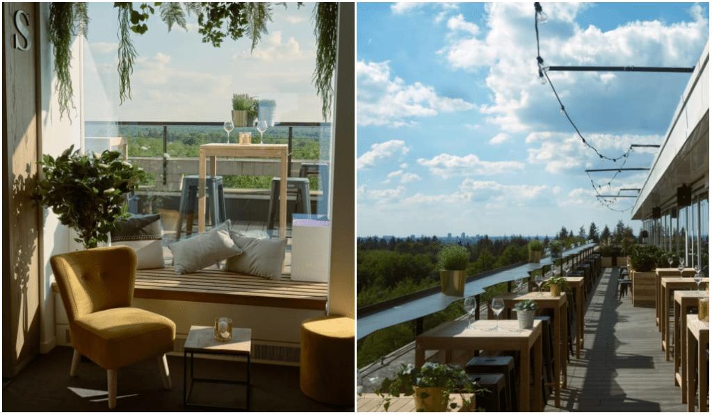 Coup de coeur : l'incroyable rooftop Soko, au coeur de la forêt de Soignes !