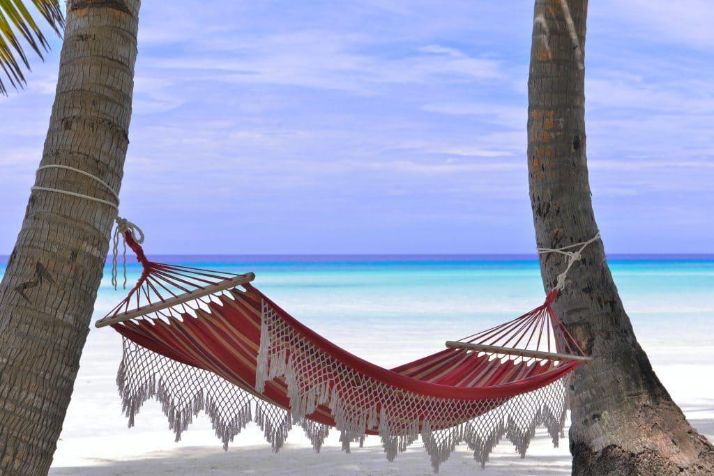 Job de rêve : être payé 4200€ pour chiller dans un transat tout l'été !