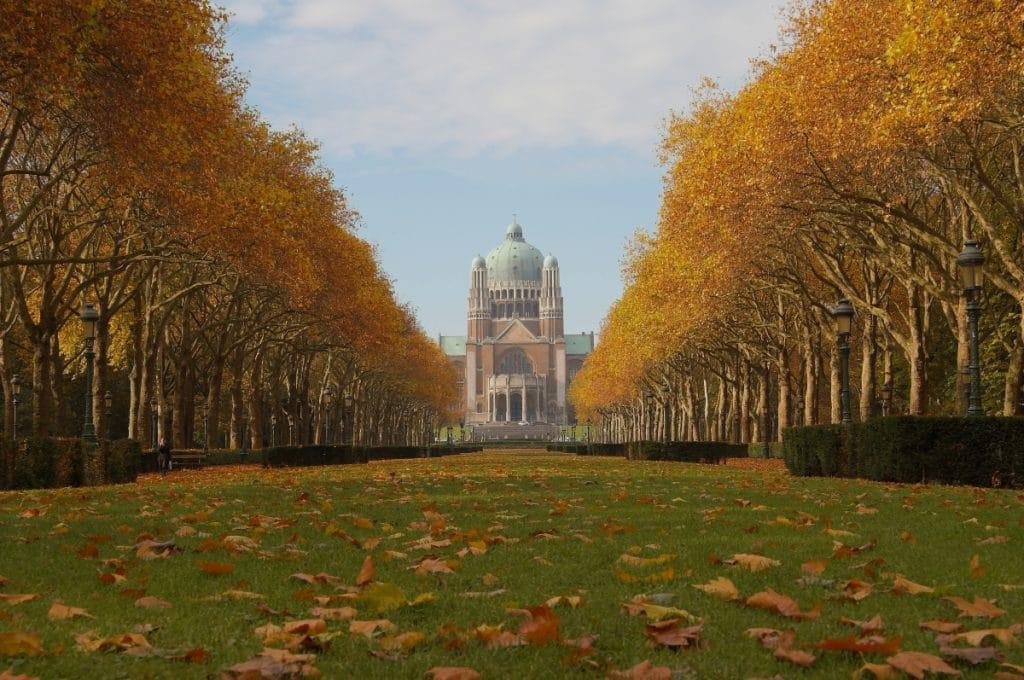 Bruxelles en automne : un circuit photographique plein de charme