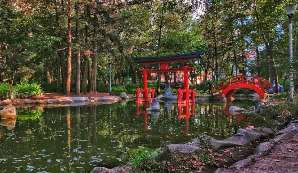 Los mejores parques de CDMX