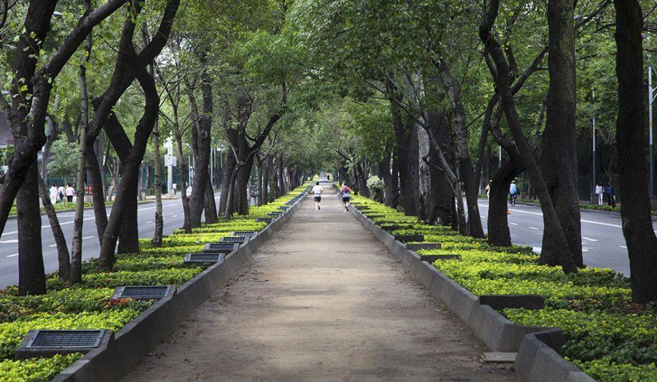 Los mejores espacios abiertos para una caminata de fin de semana