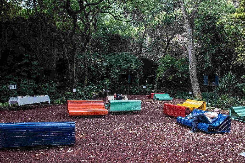 Cinco parques y espacios sonoros de la CDMX que debes visitar