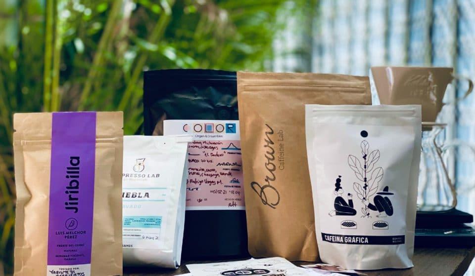 Ratiorama, el máster de café que cura los mejores granos mexicanos