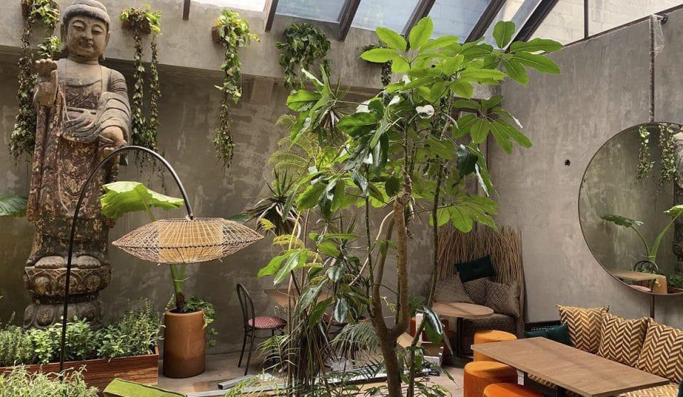Plantasia: un oasis en medio de la colonia Roma