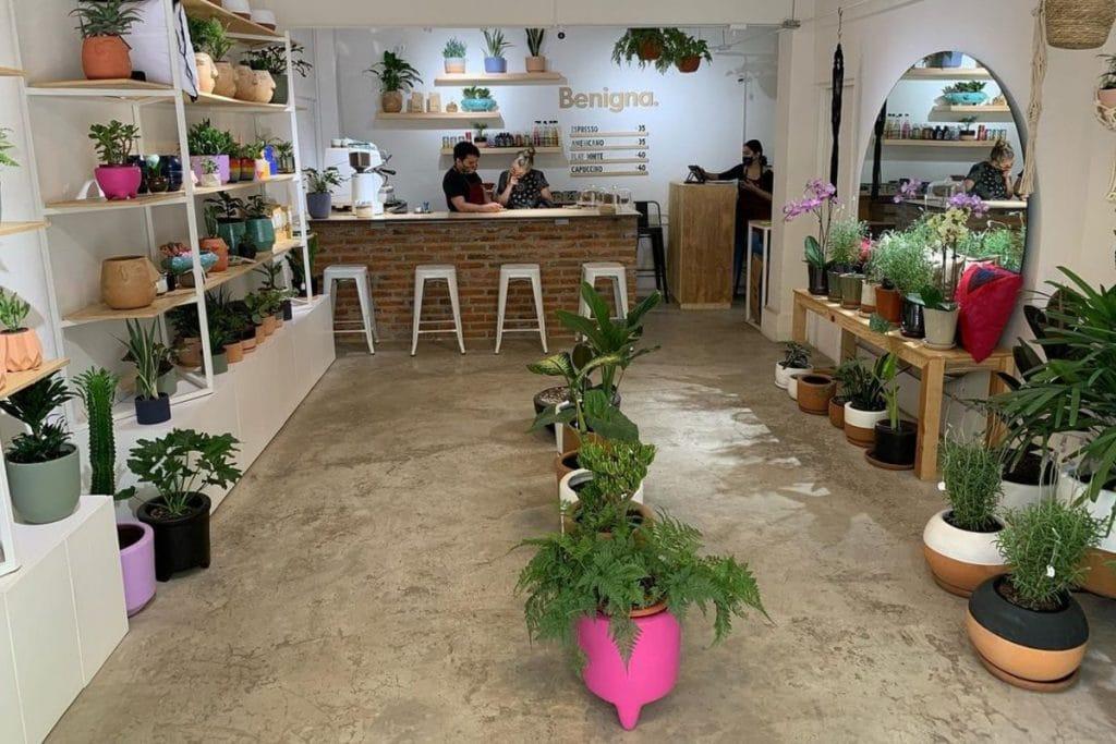 Beningna, un lugar perfecto para comprar plantas y tomar café