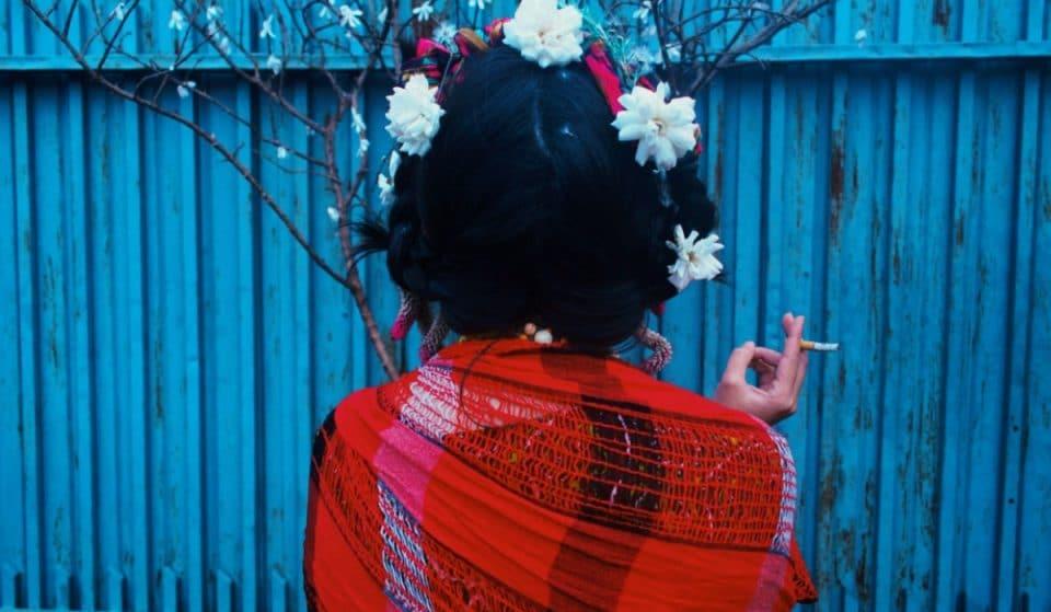 Una experiencia inmersiva de Frida Kahlo llegará al Frontón México