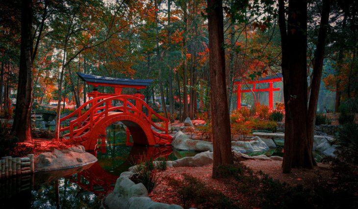 Parque Masayoshi Ohira: 7 razones por las que es uno de nuestros favoritos de la ciudad
