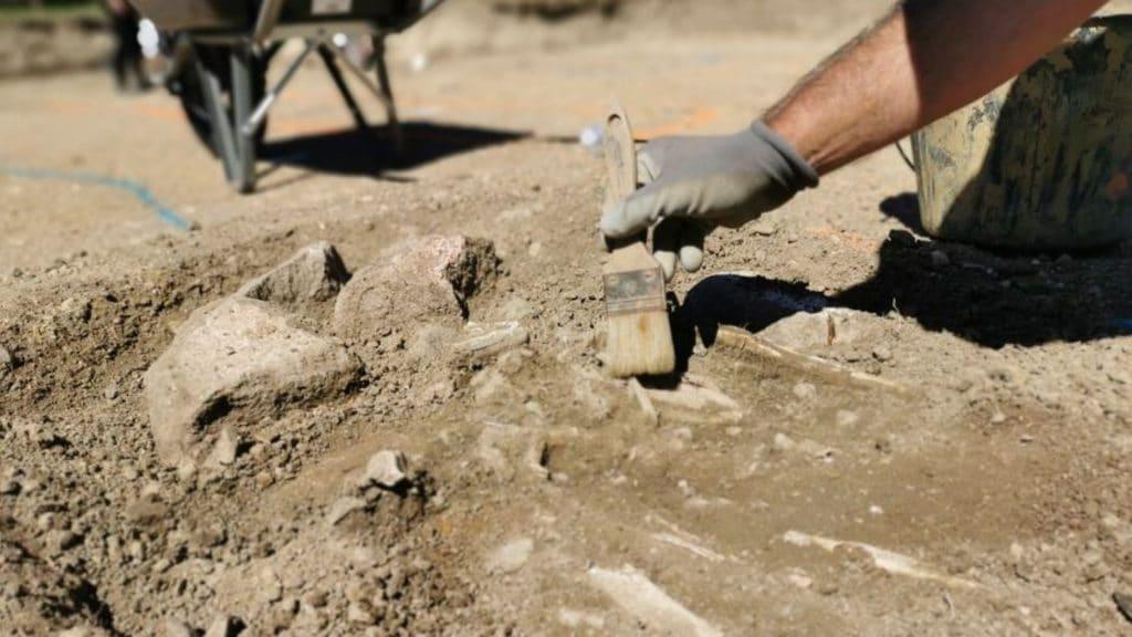 Genève : Des fouilles archéologiques menées à la promenade de l'Observatoire !