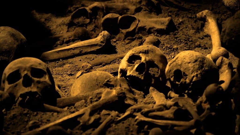 Pour Halloween, visitez la Cathédrale Saint-Pierre à la lampe torche !