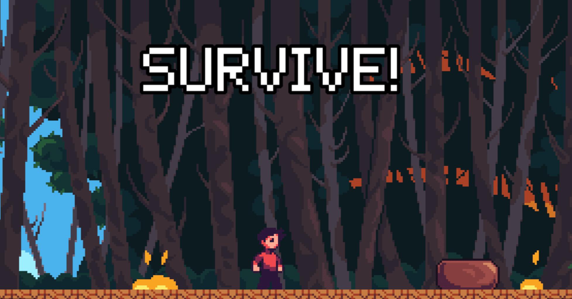 jeu 2020 pixel art feu australie survie aventure