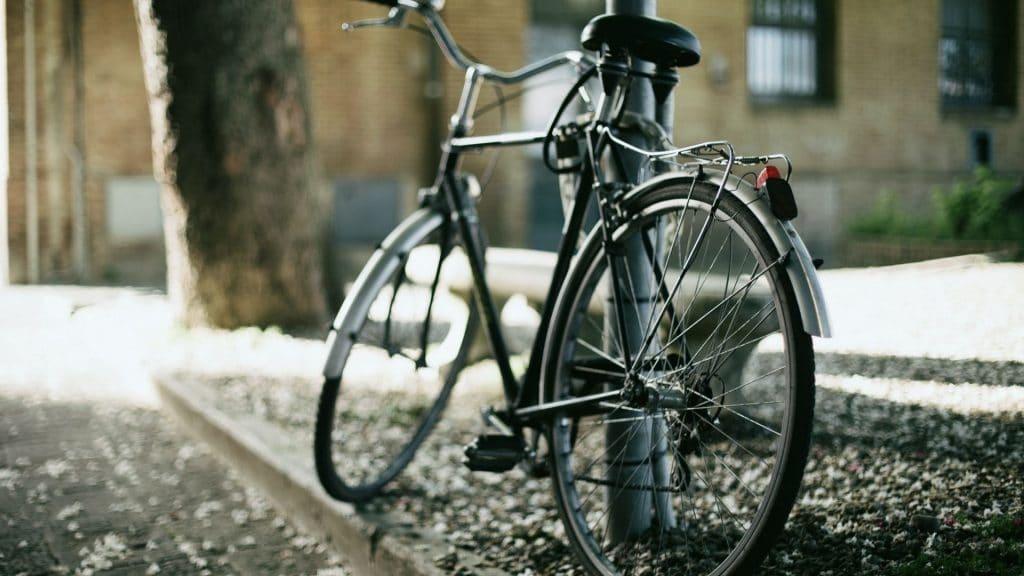 pro vélo genève visite guidée gratuite cours conduite mécanique culture balade