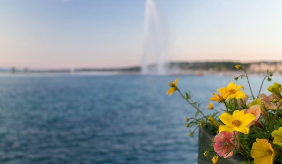 Été 2021 : La météo prévoit un été plus chaud que la normale et sans pluie à Genève