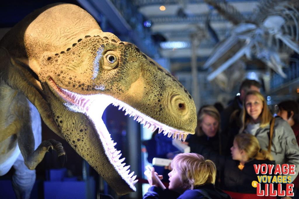Nuit des Musées 2021 : visites à la lampe torche, ateliers, concerts…