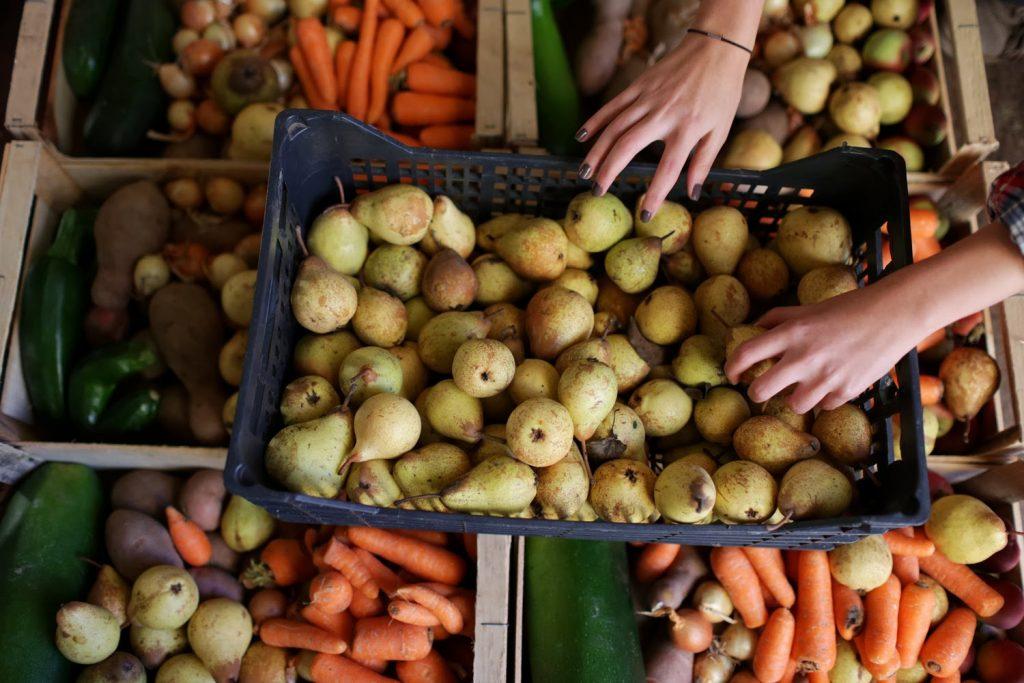 Projeto Fruta Feia: a comida que ia para o lixo vai para a tua casa