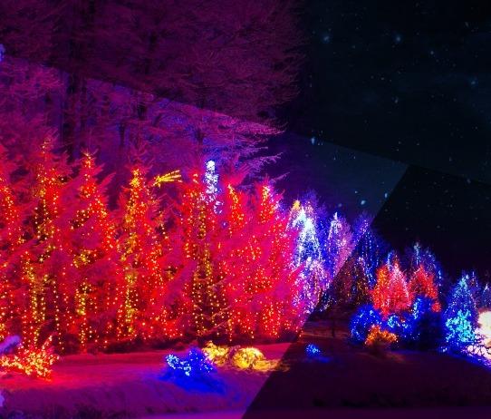O Natal em Loures vai ter um Parque Encantado