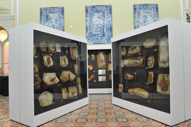 museu da dermatologia